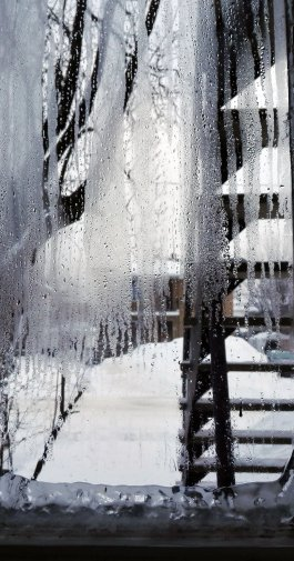 tél 7