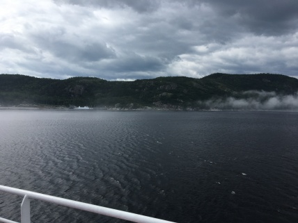 2018_we Essipit-baleines (50)(1)