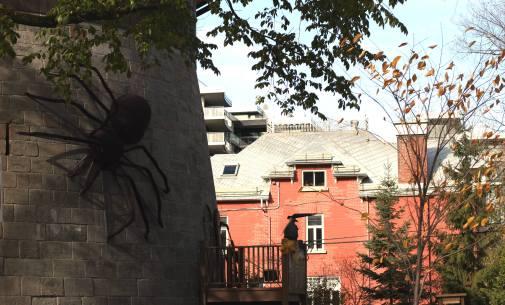 Quebec ősz 2