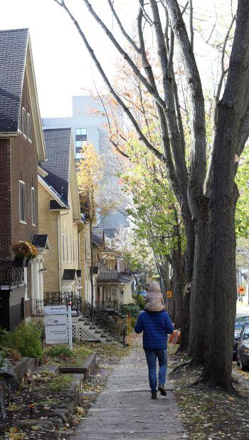 Quebec ősz